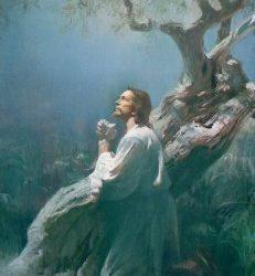 ¿Por qué Cristo sufrió en Getsemaní?