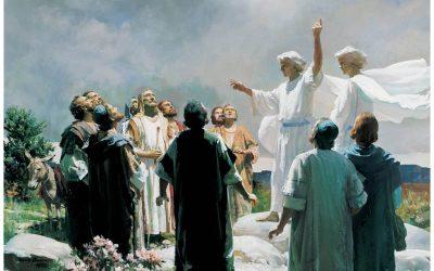 ¿Qué es el Nuevo Testamento?