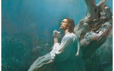 ¿Fue Jesús humano en alguna manera?