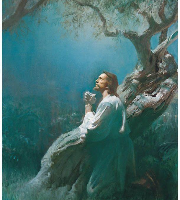 La Ley de Sacrificio: Parte II – Un gran y postrer sacrificio