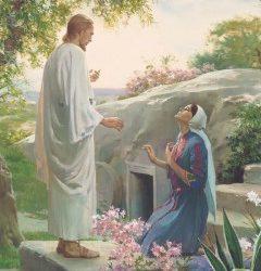 Reflexiones sobre Cristo